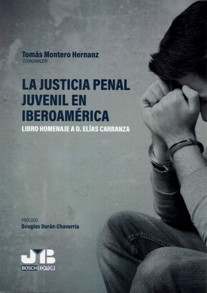 JUSTICIA PENAL JUVENIL EN IBEROAMERICA LIBRO HOMENAJE ELIAS