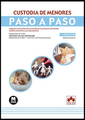 CUSTODIA DE MENORES. PASO A PASO