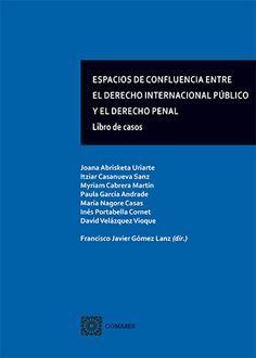 ESPACIOS DE CONFLUENCIA ENTRE EL DCHO INT. PÚBLICO Y EL DCHO PENAL