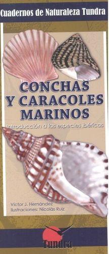 CONCHAS Y CARACOLES MARINOS. INTRODUCCION A LAS ESPECIES IBERICAS