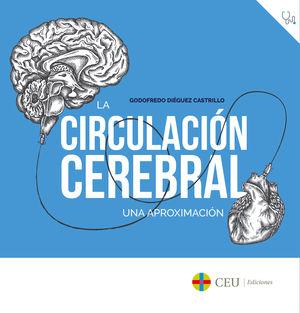 CIRCULACIÓN CEREBRAL.